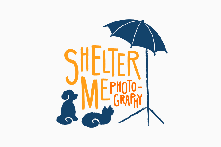 shelterme-portfolio-final