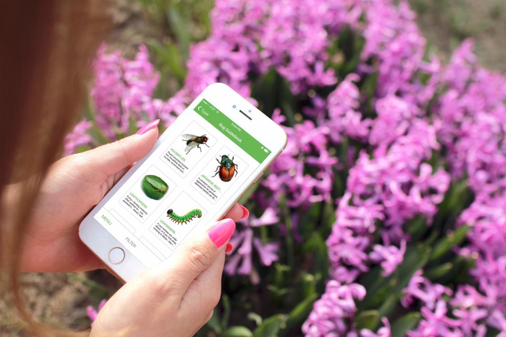 St. Louis Mobile App Development
