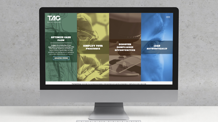 The Audit Group's new homepage features four distinct service areas which helps to increase conversion.