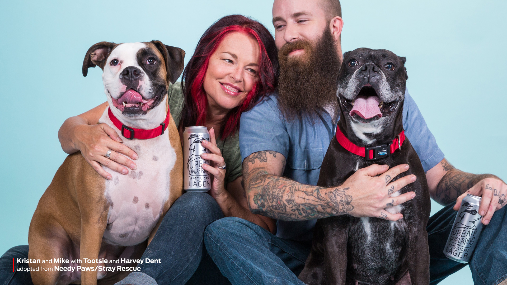 Consider A Shelter Pet campaign