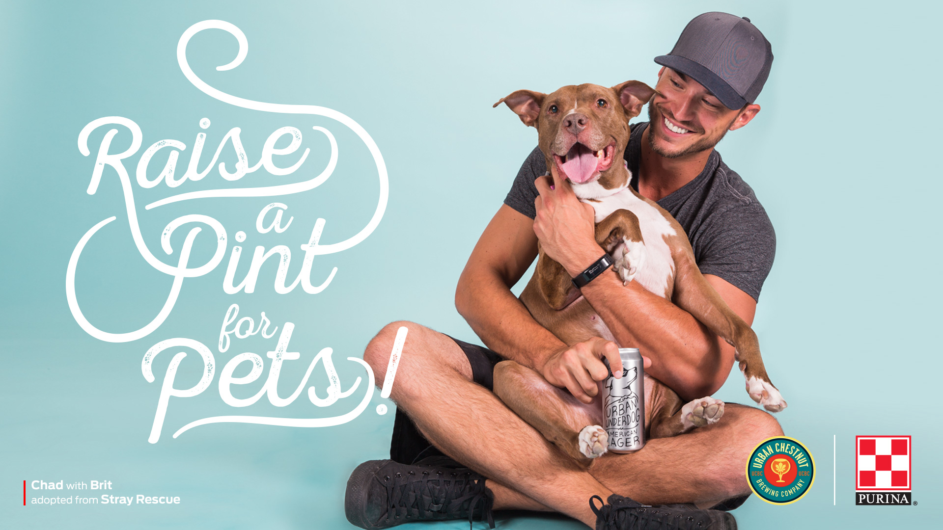 Raise a Pint for Pets - Purina branding