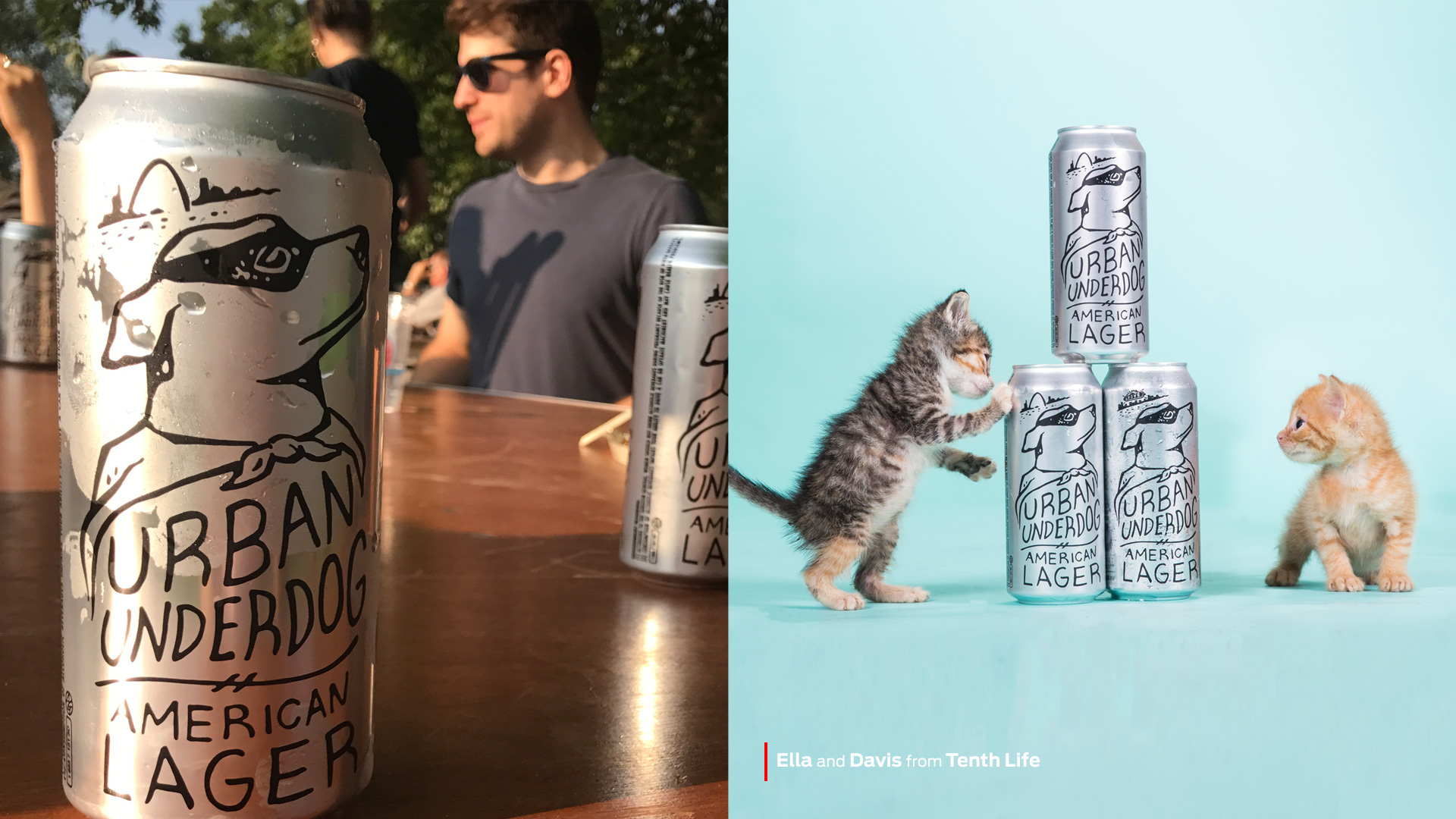 Our Media Strategy - Purina branding