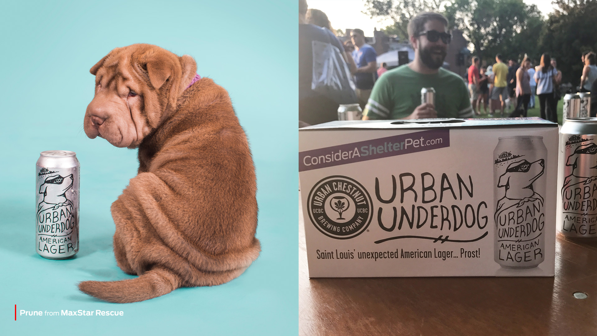 Urban & Purina partnership - Purina branding
