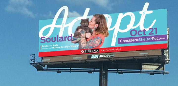 Adopt Soulard Consider A Shelter Pet