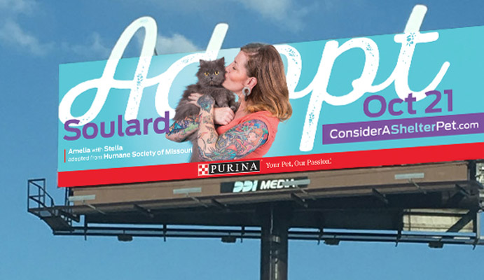 We designed the billboards for the #ConsiderAShelterPet campaign to promote the adoption event in late October 2017. Billboard designs featured an extended cutout to draw attention.