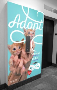 We provided environmental design to promote the adoption campaign within the Purina office in St. Louis, including this elevator wrap that was found in the lobby.