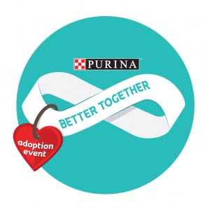 Our work with Purina's Better Together adoption event has evolved over the years, from challenging misperceptions of shelter pets to encouraging adoptions.