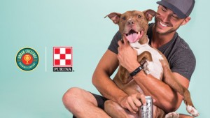 The 2017 #ConsiderAShelterPet campaign was focused on increasing shelter pet adoptions through the use of print media, billboards, social media, and landing pages. This annual adoption campaign culminates in an adoption event in Soulard Market Park.