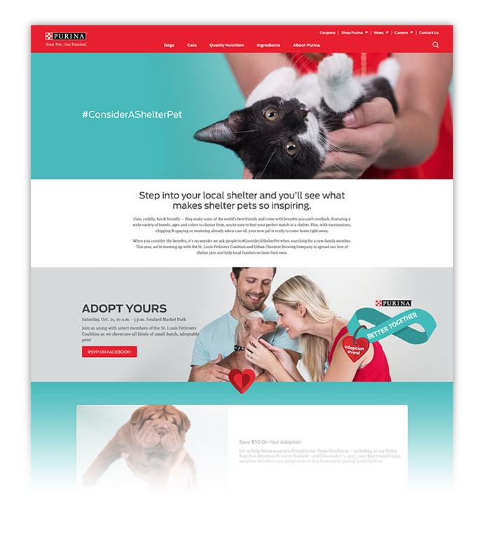 A campaign landing page was designed to provide information on the adoption event and encourage adopting from your local shelter.