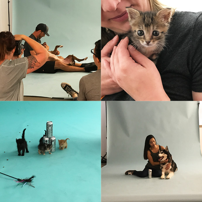 We provided art direction for the adoption campaign's photoshoot, which was held in our St. Louis office.