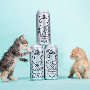 Purina adoption campaign branding and design