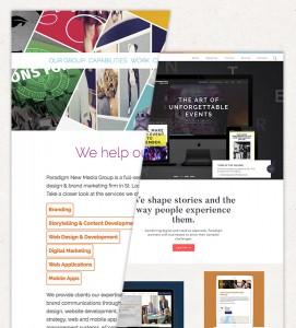 paradigm new website development